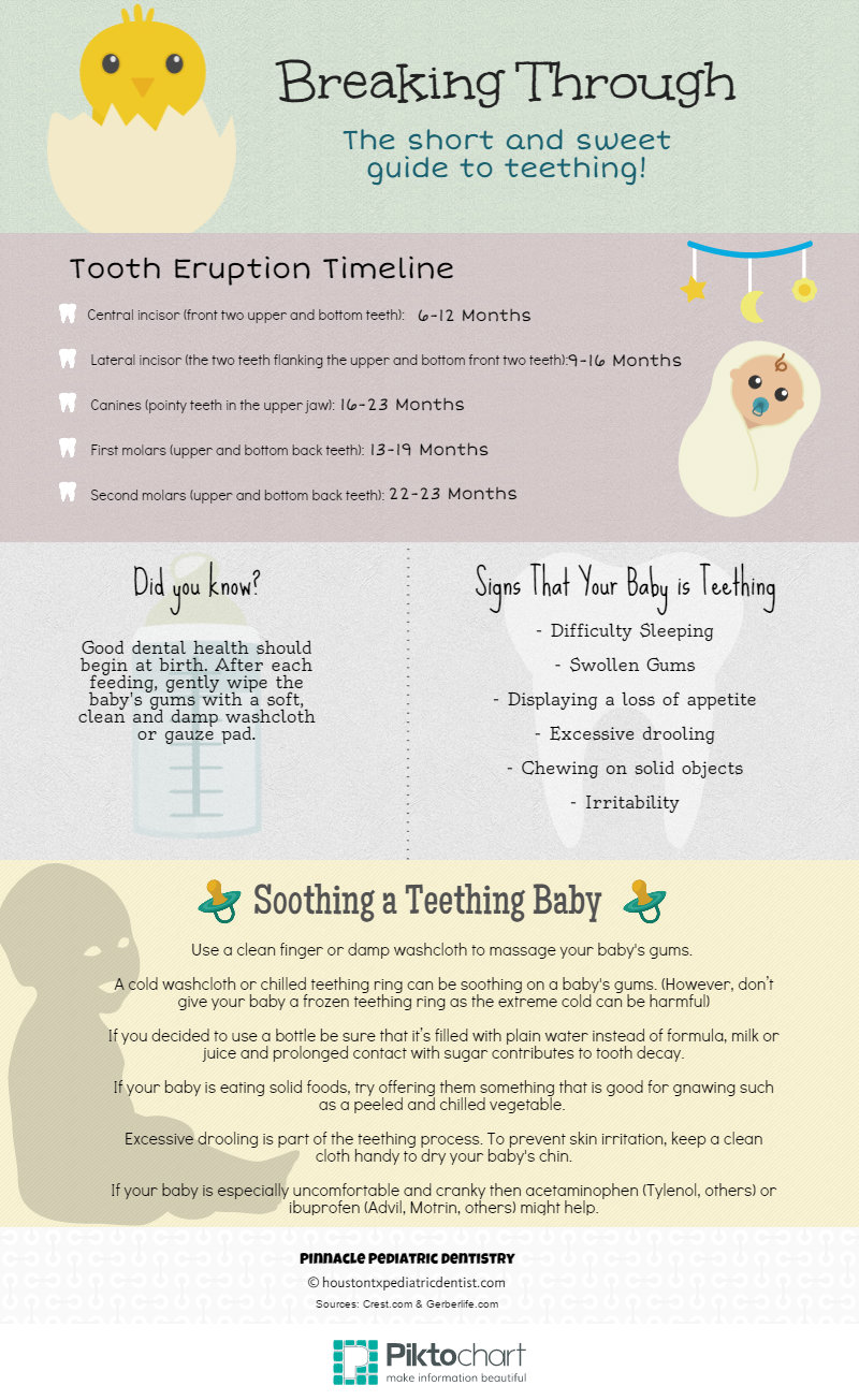 Baby Teething Facts
